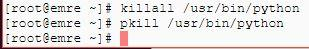 pkill killall