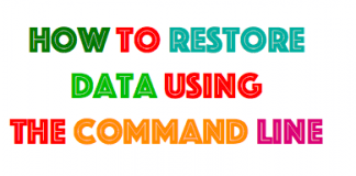 restore Data tsm